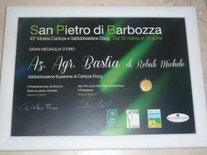 S-Pietro-2013